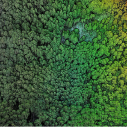 drone aerial mapping